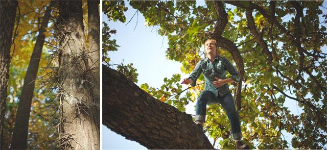 4-thorny-tree-and-mckenzie